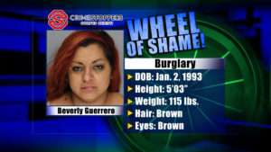 Wheel of Shame Fugitive: Beverly Guerrero