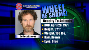 Wheel Of Shame Fugitive: Jeffery Atwood