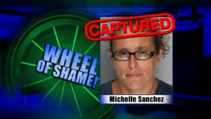 Wheel Of Shame Arrest: Michelle Sanchez