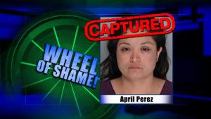 Wheel Of Shame Arrest: April Perez
