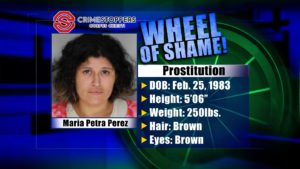 Wheel Of Shame Fugitive: Maria Petra Perez